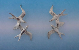 Double Swallow Earrings  SW 2 FW