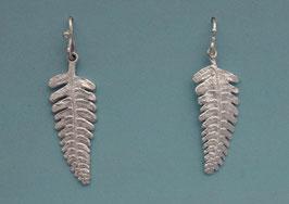 Wide Fern Earring - L 14 W FW