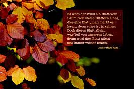 Sujet 10:  Herbst