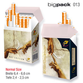 indo slipp 013 > Michelangelo Bigpack Normal-Size