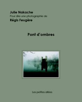 Nakache / Feugère, Pont d'ombres