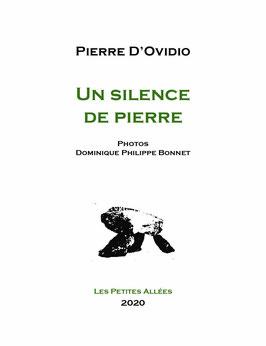 Pierre D'Ovidio, Un silence de Pierre
