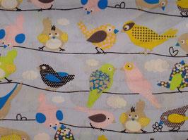 Birds hellblau