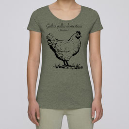 "Frauen T-Shirt in mid heather khaki ""Gallus gallus"""