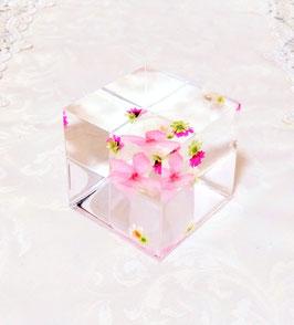 桜のクリスタル・アートリウム®キューブ型・専用スタンド付き