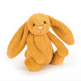 Bashful Bunny saffron