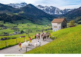 appenzellerland alpaufzug