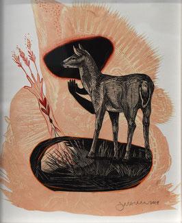 Deer: Growth