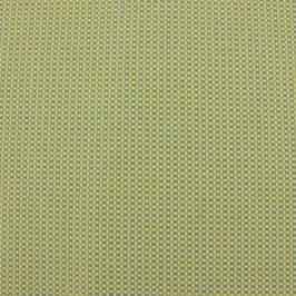 Dobby Mini-Karo grün