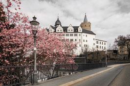 Frühling am Schloss Wildeck Colourkey