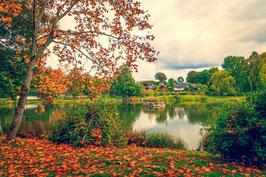 Herbst am Weberteich 2