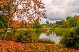Herbst am Weberteich 1