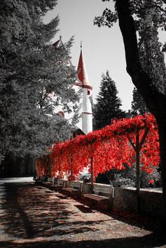 Herbstlicher Schlosspark Schlettau