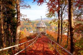 Herbst am Buchholzer Türmel