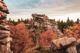 Herbstliche Greifensteine matt 2