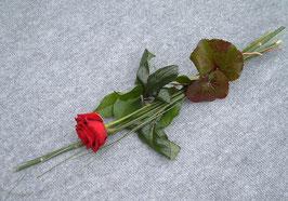 Einzel-Rosenstrauß (zum Nachwerfen, #7001)