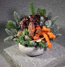Tonschale, winterlich bepflanzt/gesteckt, #8017