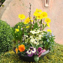 Bepflanzte Frühlingsschale
