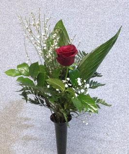 Gedenk-Rose in verschiedenen Farben