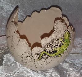 Dekokugel Gecko