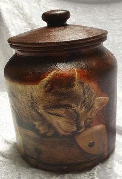 Topf Katze