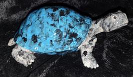 Schildkröte gross (Blue Sam)