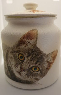 Topf Katze liegend