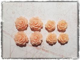 Harzblumen - apricot
