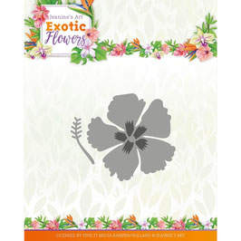 Find It Trading Stanzform-Exotic Flowers/Exotic Hibiscus