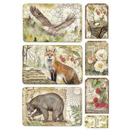 Stamperia Reispapier A4-Forest DFSA4427