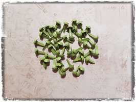 Brads-grün/406