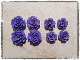 Harzblumen - violet