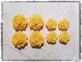 Harzblumen - gelb