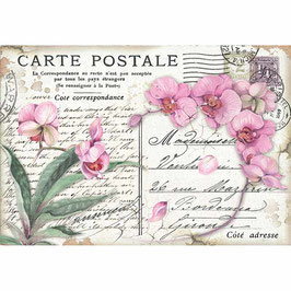 Stamperia Reispapier 33x48-DFS415