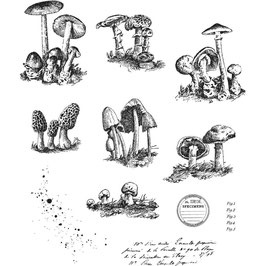 Stampers Anonymous by Tim Holtz-Stempel/Tiny Toadstools CMS377