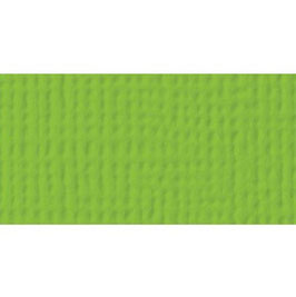 American Craft's Cardstock 55-71060 Cricket