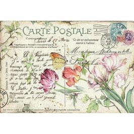 Stamperia Reispapier 33x48-DFS416