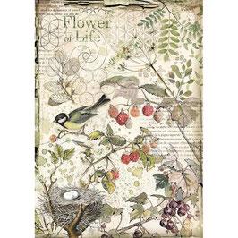 Stamperia Reispapier A4-Forest DFSA4459