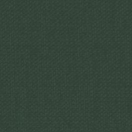 Papers for you-Buchbinderleinen/Forest 50x47cm
