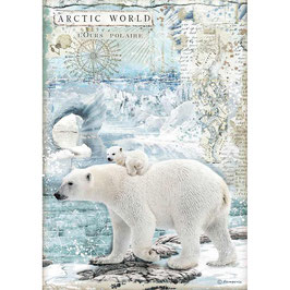 Stamperia Reispapier A4-Arctic Antarctic DFSA4478