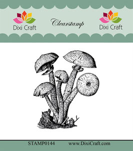 Dixi Craft Clear Stamp-Botanical Collection/Nr.10