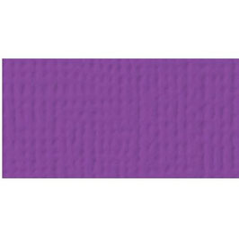 American Craft's Cardstock 02-71010 Grape