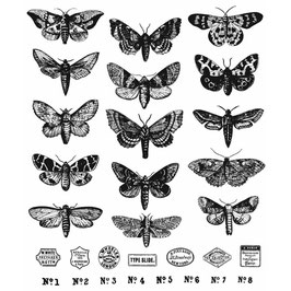 Stampers Anonymous by Tim Holtz-Stempel/Moth Study CMS436