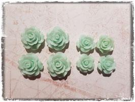 Harzblumen - mint