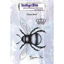 IndigoBlu-Stempel/Giant Bee