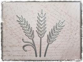 Stanzformen-Weizen 3038
