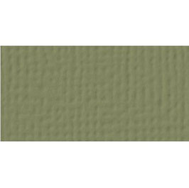 American Craft's Cardstock 52-71050 Olive
