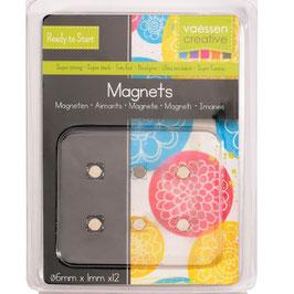 Vaessen Creative Magneten/Superstrong 6mm Ø 12 Stück