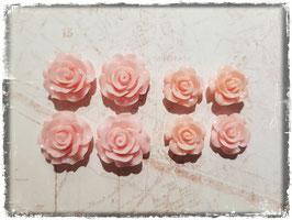 Harzblumen - rosa