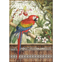Stamperia Reispapier A4-Amazonia DFSA4531